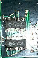 P0015324.JPG