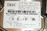 P0028299.JPG