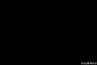 P0030689.JPG